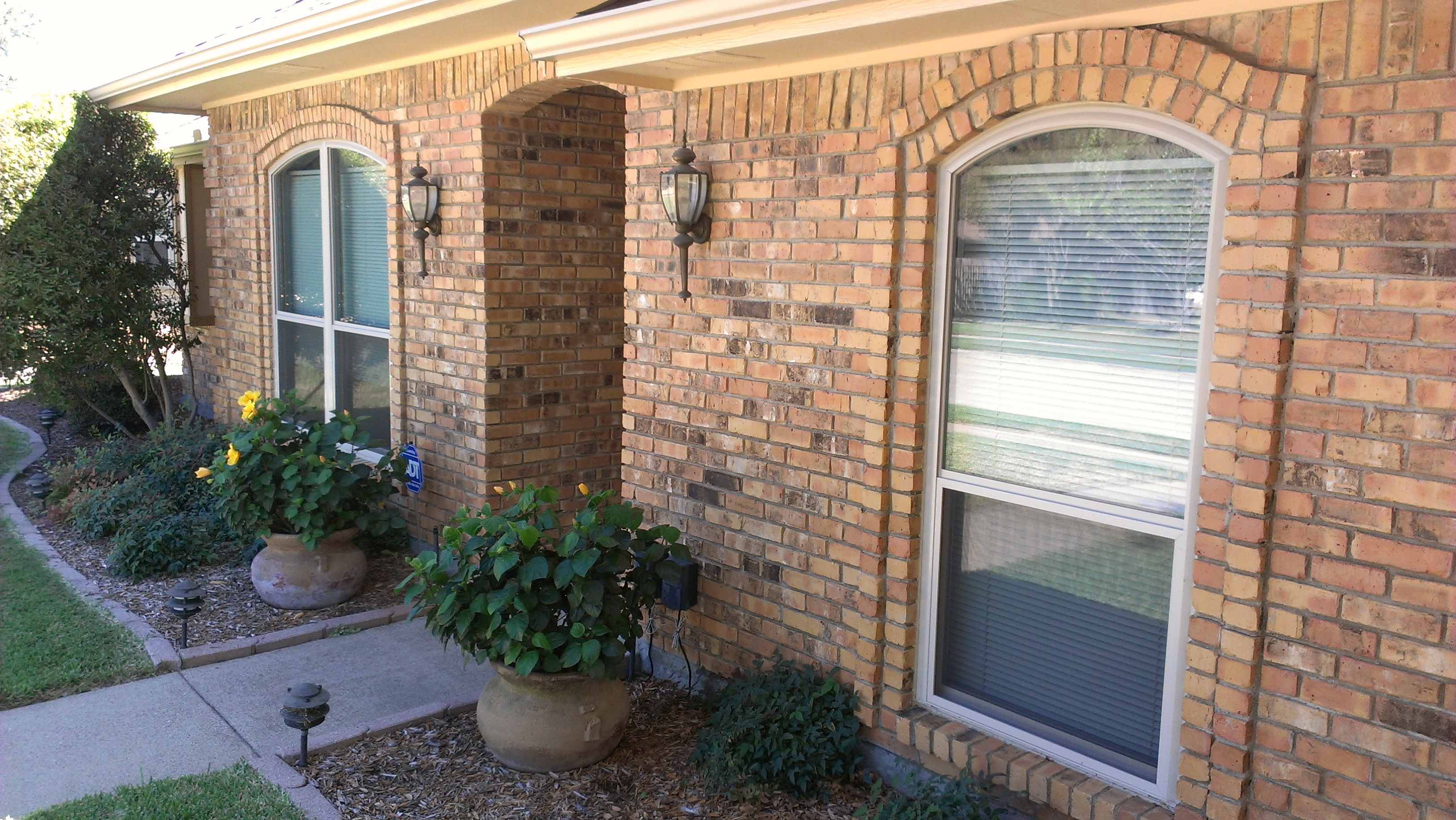 Home Window Guy Single Hung Replacement Windows Of